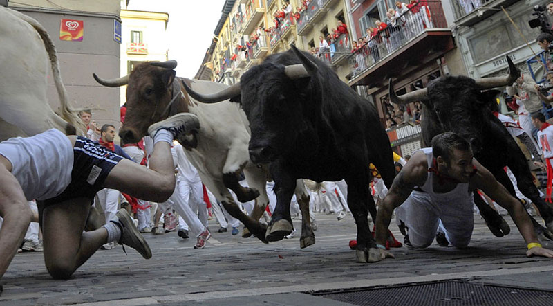 İspanya, Boğalar ve İspanyolca